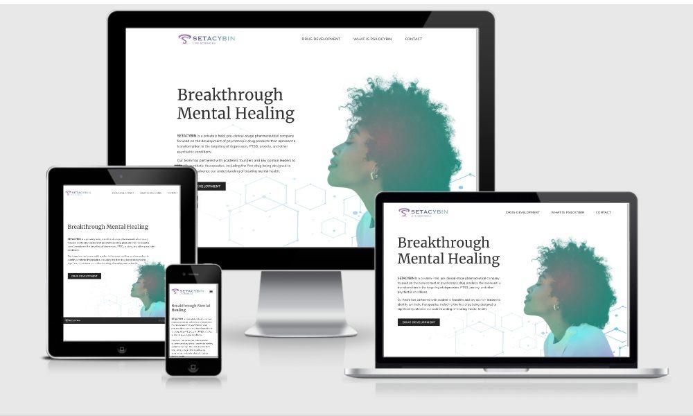 portfolio-cover-2021-setacybin